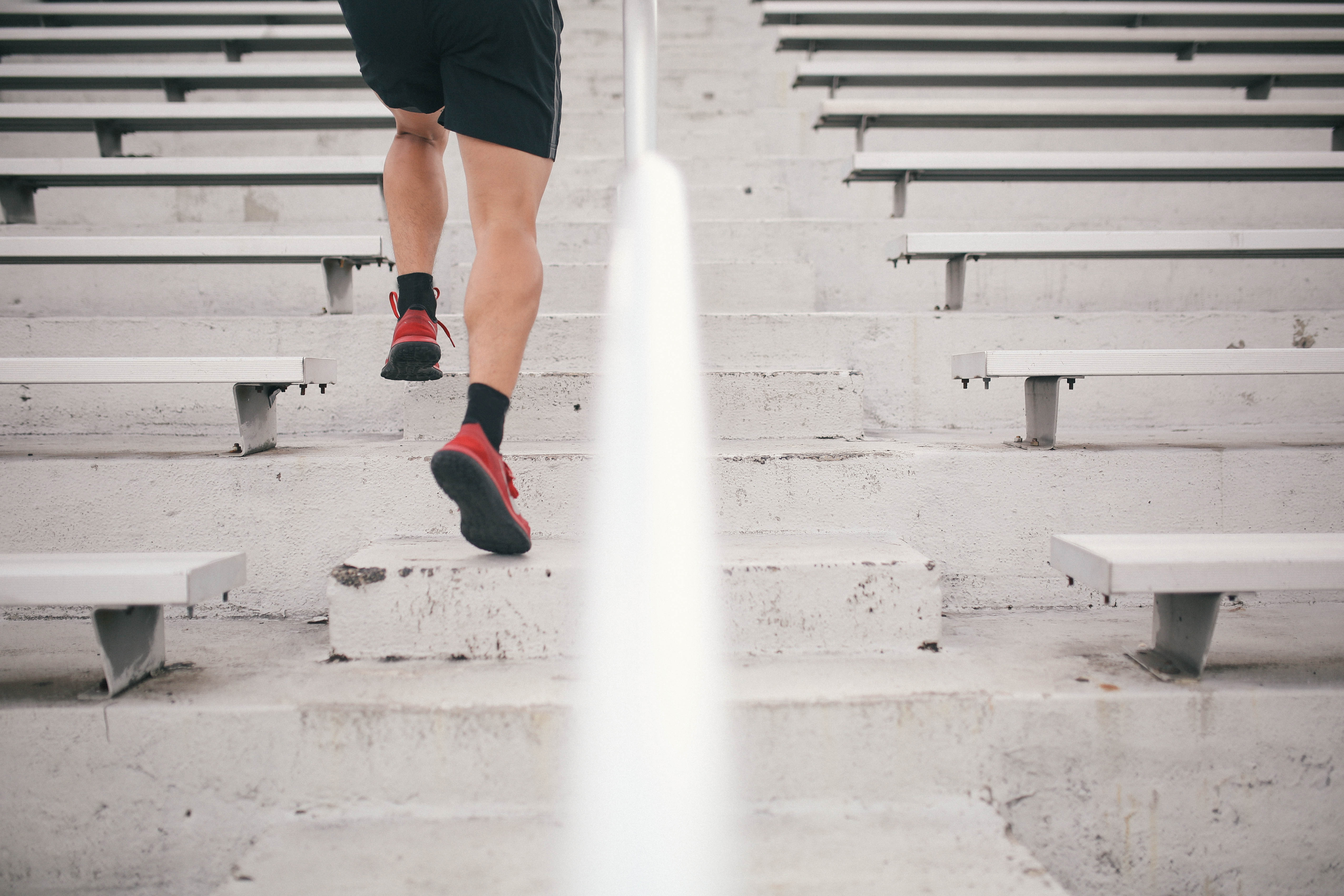 Tampa therapist, tampa counselor, benefits of exercise, exercise and mental health, carrollwood counselor, counseling carrollwood, therapy in carrollwood, carrollwood therapy